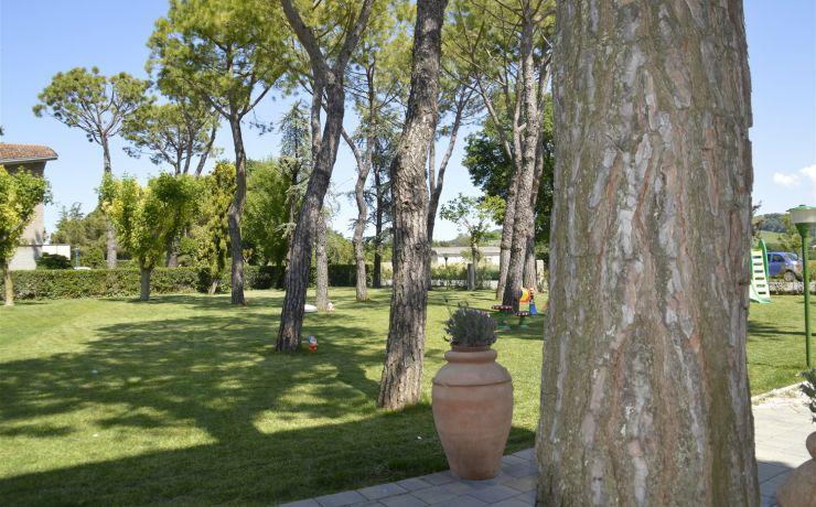 Hotel ristorante ausonia giardino 5